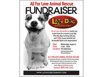 AFLAR Fundraiser at Lazy Dog Restaurant