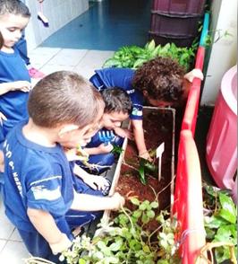 educação ambiental 1