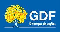 logo gdf 2019.png