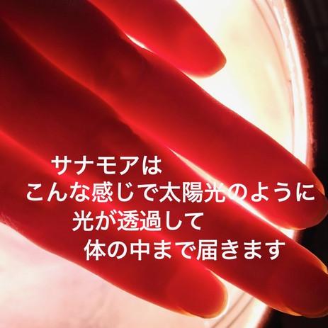 IMG_0818.jpeg