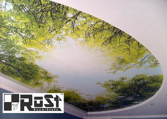 натяжной потолок с фотопечатью 10.jpg