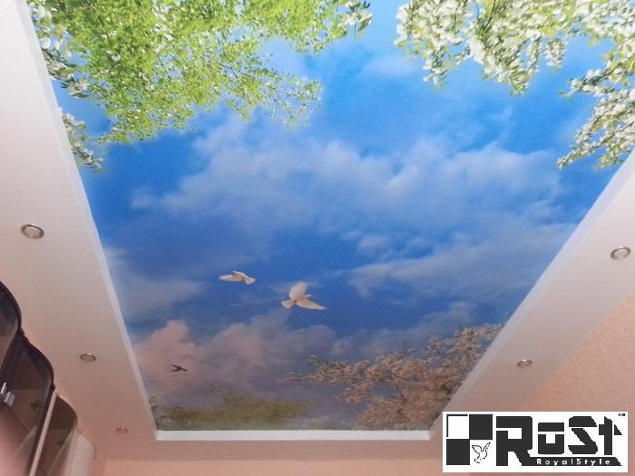 натяжной потолок с фотопечатью 14.jpg