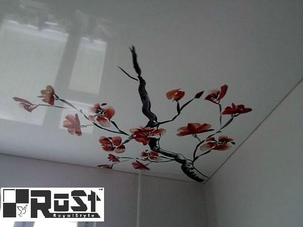 натяжной потолок с фотопечатью 8.jpeg