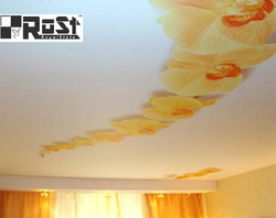 натяжной потолок с фотопечатью 33.jpg