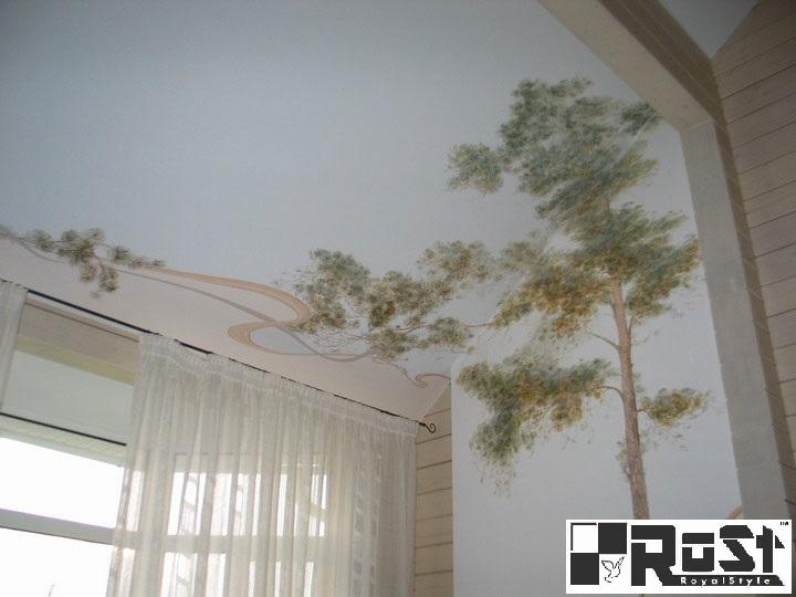 натяжной потолок с фотопечатью 7.jpg