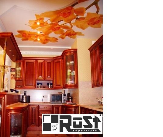 натяжной потолок с фотопечатью 1.jpg