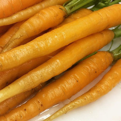 Carrots for everyone
