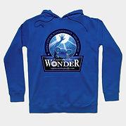 new blue hoodie.jpg