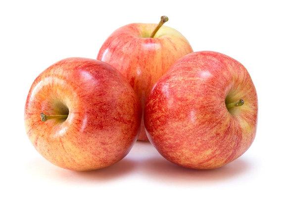 Apples - Individual Gala