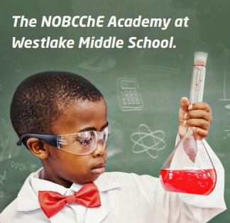 NOBCChE Science Academy Info Night Success