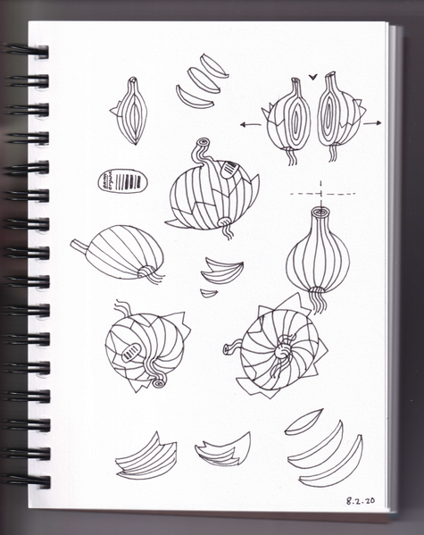 onionsketches copy.png