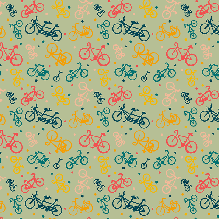 BIKES-COLOR1_small.png