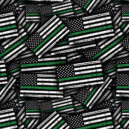 Flag 10.jpeg