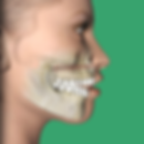orthognath icon.png