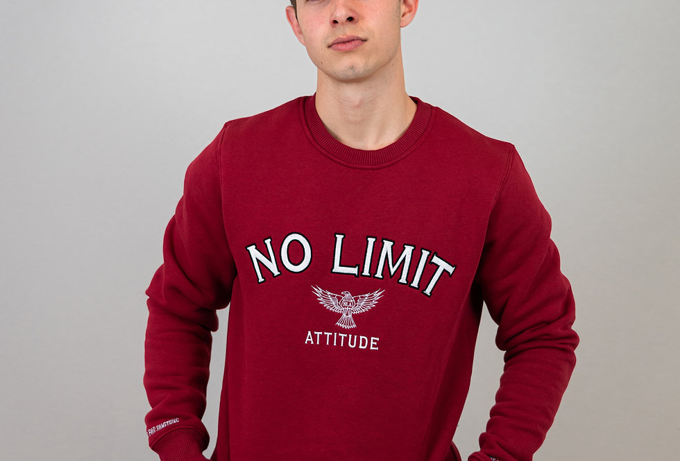 NO LIMIT ATTITUDE - Stand for Something Sweater