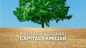 A ESTABILIDADE DO CAPITAL FAMILIAR