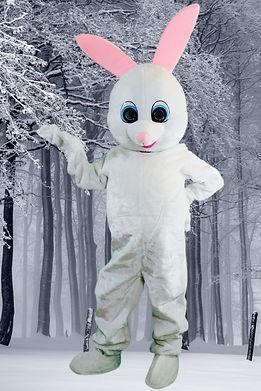 lapin blanc.jpeg