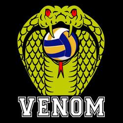 Venom Philipines Volleyball Team 菲律賓排球隊.