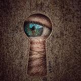 key-hole-3951029_640.jpg