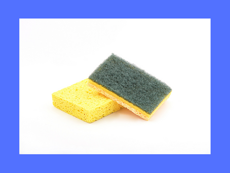 What can you learn from a kitchen sponge?