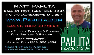 Lawn Mowing Service Lawn Service Lawn Care Service West Henrietta Lawn Mowing Service Lawn Service Lawn Cutting Service Grass Cutting Service Lawn Care Service West Henrietta Yard Mowing Service Yard Service Yard Cutting Service Lawn Care Service West Henrietta Lawn Maintenance Service Landscaper Landscaping Henrietta, NY
