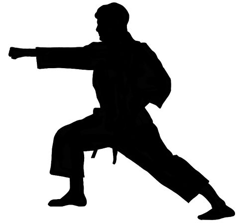 CTK Tom Forward punch silhouette.jpg