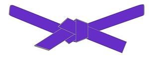 purple belt.png