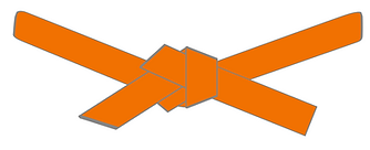orange belt.png