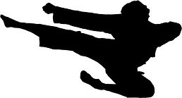 CTK Ben Flying Kick black silhouette.jpg