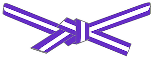 purple stripe.png
