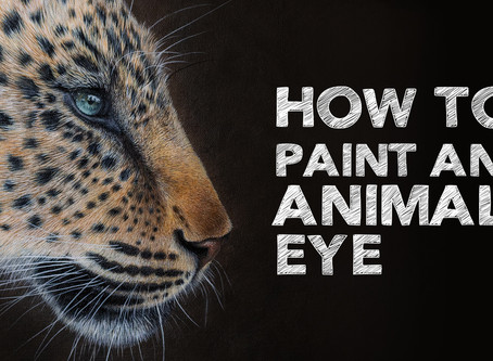 How to Paint a Realistic Animal Eye
