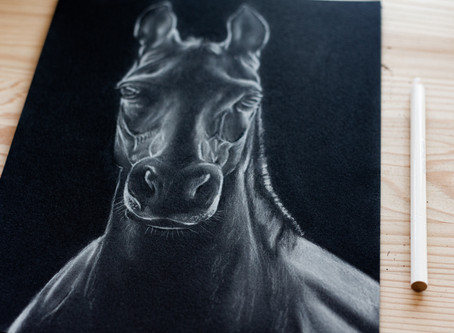 Black and White Chalk Pastel Tutorial: Horse Drawing