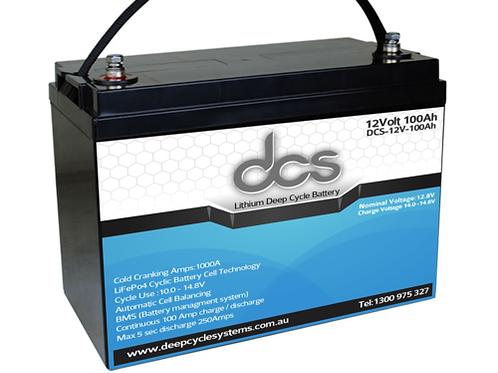 DCS 12-100