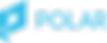 polar_logo_blue.png