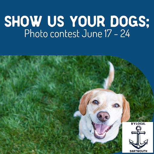 Dog Days of Dartmouth Online Photo Contest