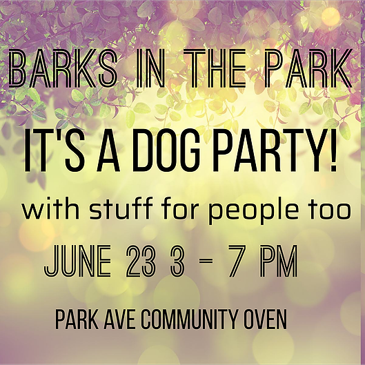Dog Days of Dartmouth Barks in the Park Party