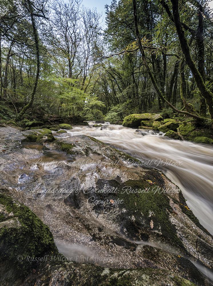 Golitha Falls 3