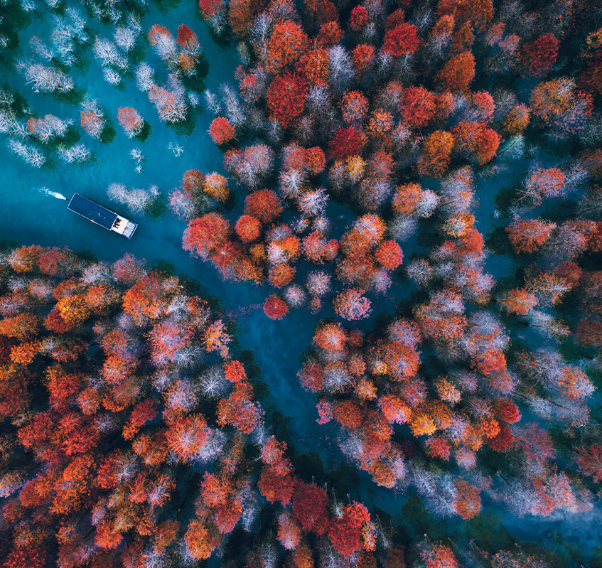 Seize-the-Autumn-Trail-Top-9-Nominated-Landscape-2017-SkyPixel-Photo-of-the-Year
