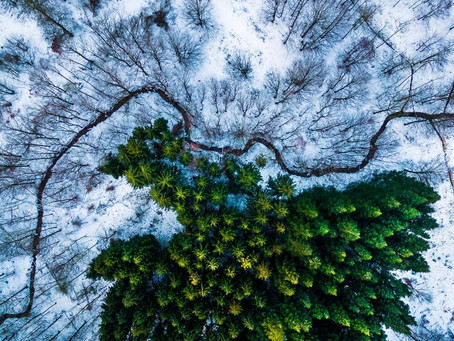 DJI Reigns Supreme in Top Drone Photos of 2016