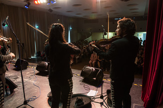 violin mariachi frankfurt.jpg