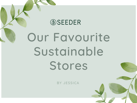 Sustainability Staples: Stores
