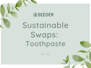 Sustainable Swaps: Toothpaste