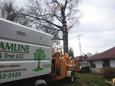 Wood chipper - tree specialists