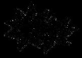 Logo Anis Reverse.png