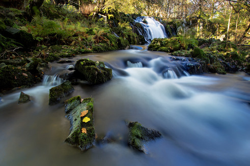 Thornthwaite Force