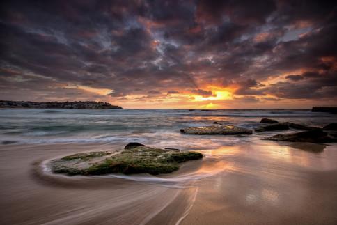 Bondi Sunrise