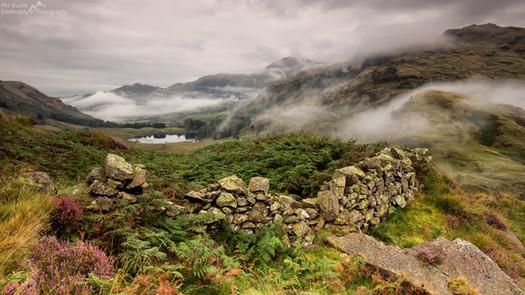 Blea Tarn Mist