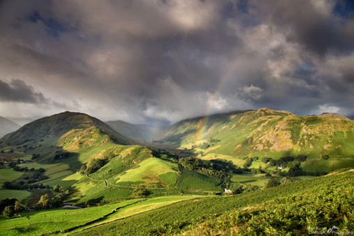 Boredale Rainbow