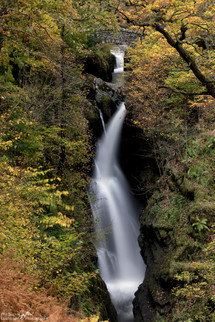 Aira Force Glimpse.jpg