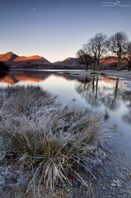 Cat Bells and the Moon.jpg